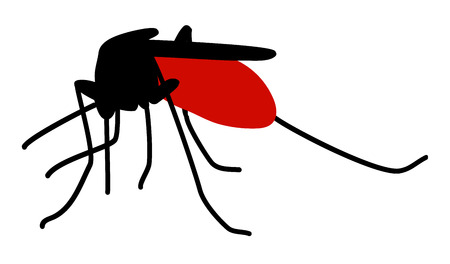 suck blood: Silhouette of biting mosquito full of blood