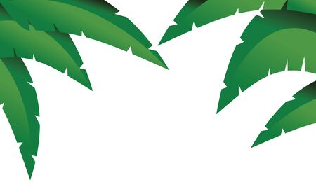 fronds: Palm branches clip art isolated on white Illustration