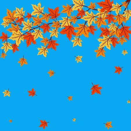 maple tree: Autumn leaves of maple tree on blue background Illustration