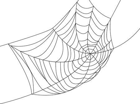 Spider web isolated on white for Halloween design Illustration