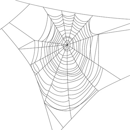 Spider web isolated on white for Halloween design Stock Illustratie