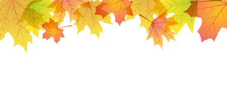 border: Autumn maple leaves frame with place for text Illustration