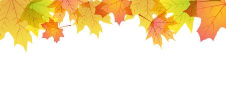 Herfst esdoorn bladeren frame met plaats voor tekst