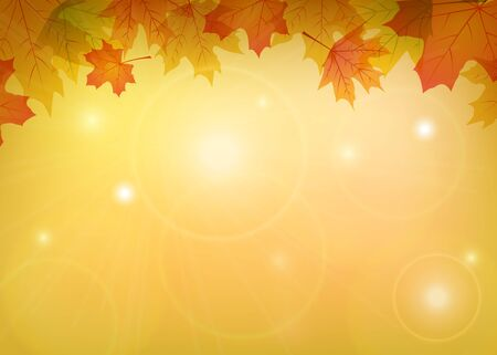 borders plants: Autumn maple leaves frame with place for text Illustration