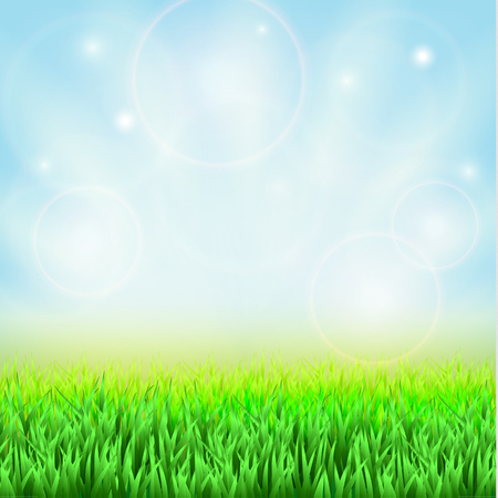 green grass and blue sky: Spring green grass, blue sky and sunshine