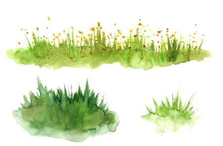 Green grass hand drawn with watercolors isolated on white