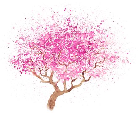 japanese garden: Watercolor hand-drawn illustration of sakura isolated on white
