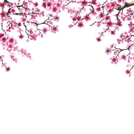 Watercolor handgetekende takken van sakura op wit wordt geïsoleerd Stockfoto