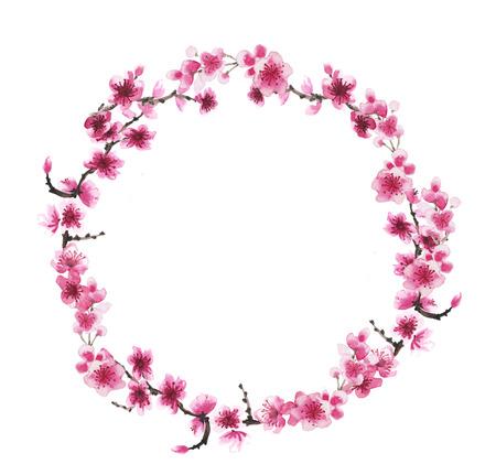 Aquarel hand getekende krans van de tak van sakura op wit wordt geïsoleerd Stockfoto