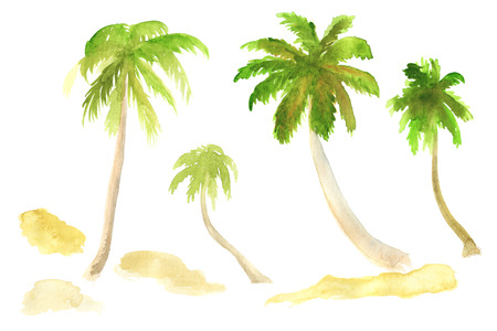 subtropical: Watercolor hand-drawn palms and sand isolated on white Stock Photo