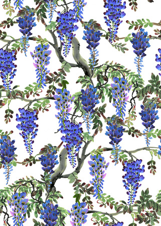 wisteria: Watercolor hand drawn illustration with blue wisteria tree. Seamless background
