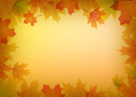 autumn leaves background: Autumn decorative background with colorful maple leaves
