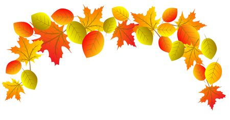 red leaves: Autumn decorative border with yellow, orrange and red leaves isolated on white