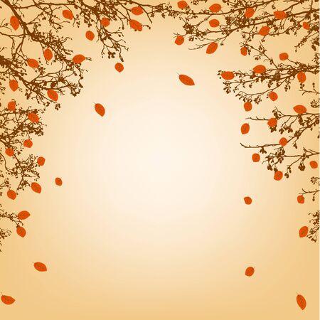 naranjo arbol: Otoño de fondo con ramas de árboles y hojas de naranja