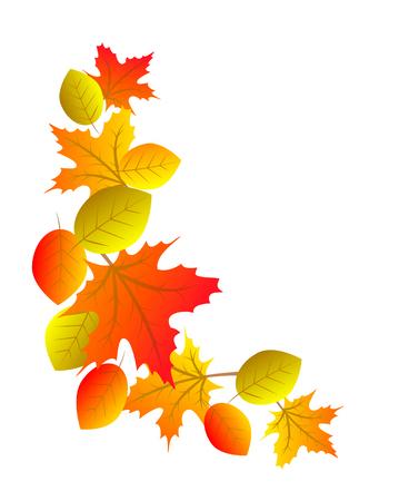 hojas parra: elemento decorativo para el otoño esquina con hojas de colores Vectores