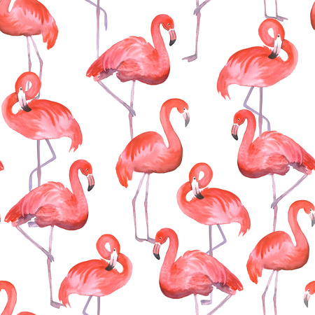 bright paintings: Seamless pattern with pink flamingo. Hand drawn watercolor painting