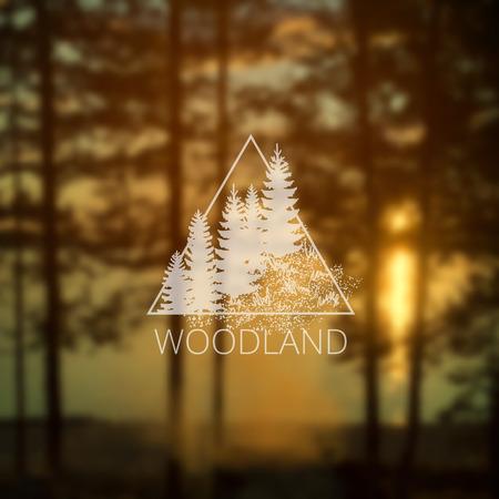 eec6b786e85da  64298471 - Triángulo del inconformista con árboles forestales en los  bosques borrosa y el fondo de la falta