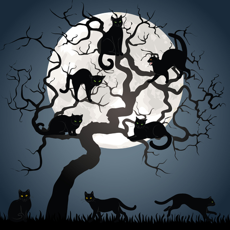 hallowen: Black cats on tree in night with full moon. Background for Halloween