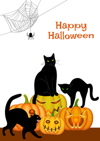 spider webs: Spider webs, black cat and bats isolated on white Illustration