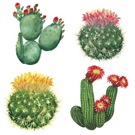 Jeu de cactus Banque d'images - 72185744