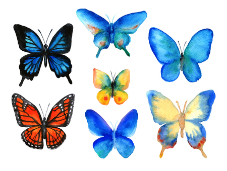 Set of summer butterflies hand-drawn with watercolor