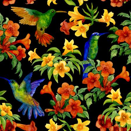 Humming birds in tropic garden