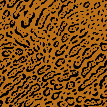 Leopard or ocelot Illustration