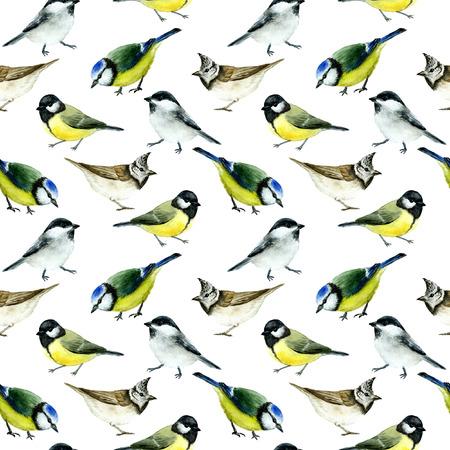 tit birds seamless