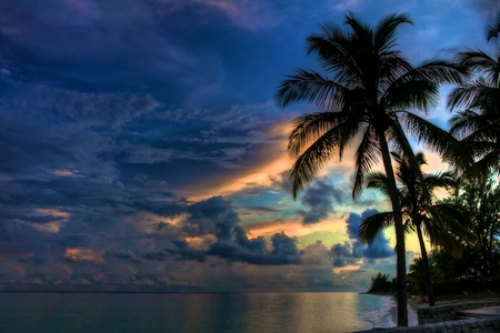 freeport: Deep blues and orange of a sunset in the Bahamas with a palm tree in the foreground