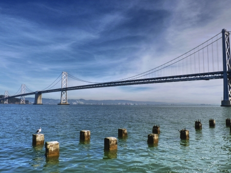Bay Bridge in San Francisco with old posts and sea gull in front photo