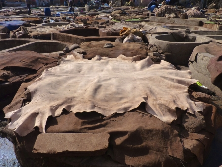 Tannery tanks and hides in Marrakech, Morocco