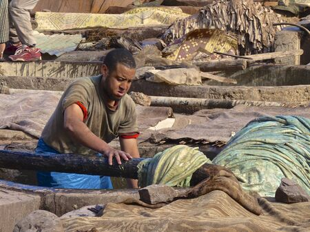 hides: Worker handling hides at a tannery in Marrakech, Morocco. December 8, 2012