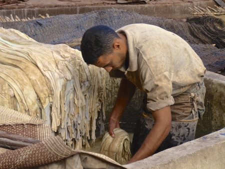 Worker handling hides at a tannery in Marrakech, Morocco. December 8, 2012