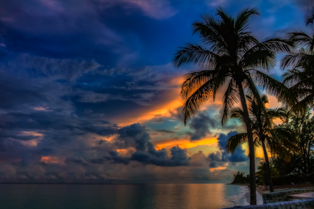 Deep blues and orange of a sunset in the Bahamas with a palm tree in the foreground