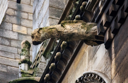 Gothic gargoyles covered in moss on the facade of the famous Notre Dame de Paris Cathedral in Paris, France with rain drops falling down