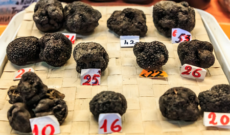 Selection of Black Truffles Tuber melanosporum with price tags on display at a market stall in Ventimiglia, Umbria Italy