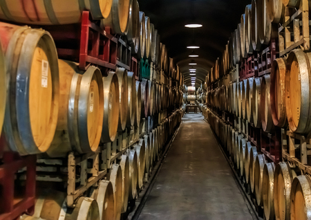 Wine barrels stacked in an old cellar at a winery in Sonoma, USA