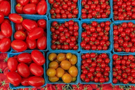 Selection of vine ripened red and yellow cherry and plum tomatoes at a stall in an outdoor farmers market in Manhattan, New York, USA