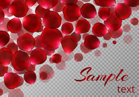 Background with falling red rose petals and a place for your text on a transparent backdrop. Vector festive decoration.