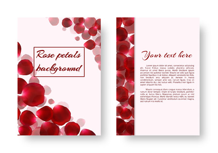 sumptuous: A greeting card with rose petals flying against a light background. Vector illustration with a floral border. Illustration
