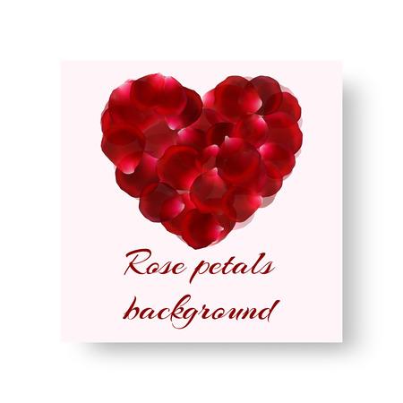 Cover catalog in romantic design with falling rose petals