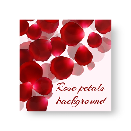 Romantic style brochure cover with gorgeous red rose petals Illustration