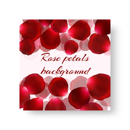Template of a festive background in a romantic style with petals of red roses