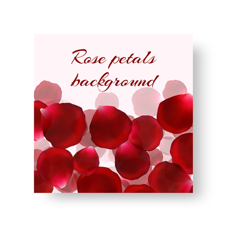 Brochure template with bright red rose petals  イラスト・ベクター素材