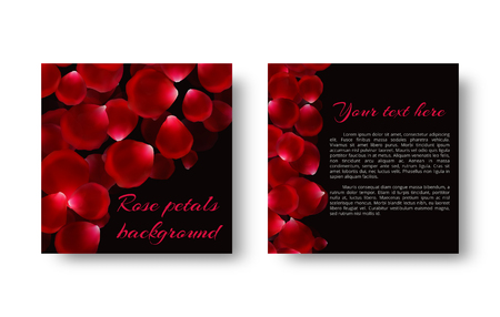 Bright background with falling rose petals for romantic greeting design. Illustration