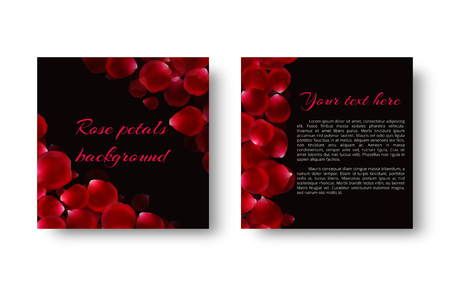 A template of a postcard with rose petals for a loving congratulation on Valentines Day or Mothers Day.  イラスト・ベクター素材