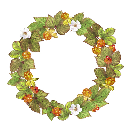 A wreath of berries and cloudberry leaves Stock Photo