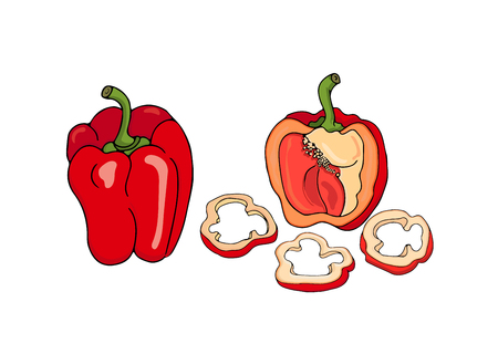 Illustration of red bell pepper, halved and sliced isolated on white background. Vector