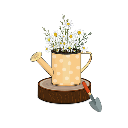 Decoration for the garden, a bouquet of field daisies in a vase of watering can on the stump. Vector