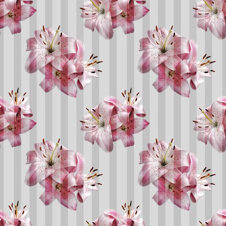 Seamless pattern with pink lilies on transparent stripes.